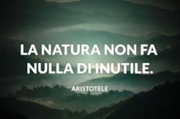 Gli uomini discutono, la natura agisce.