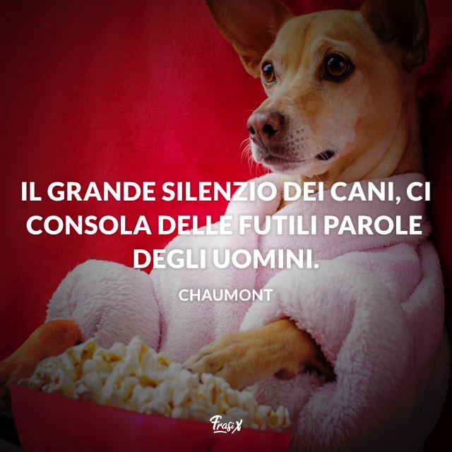 Frasi Per Cani.Frasi Sui Cani