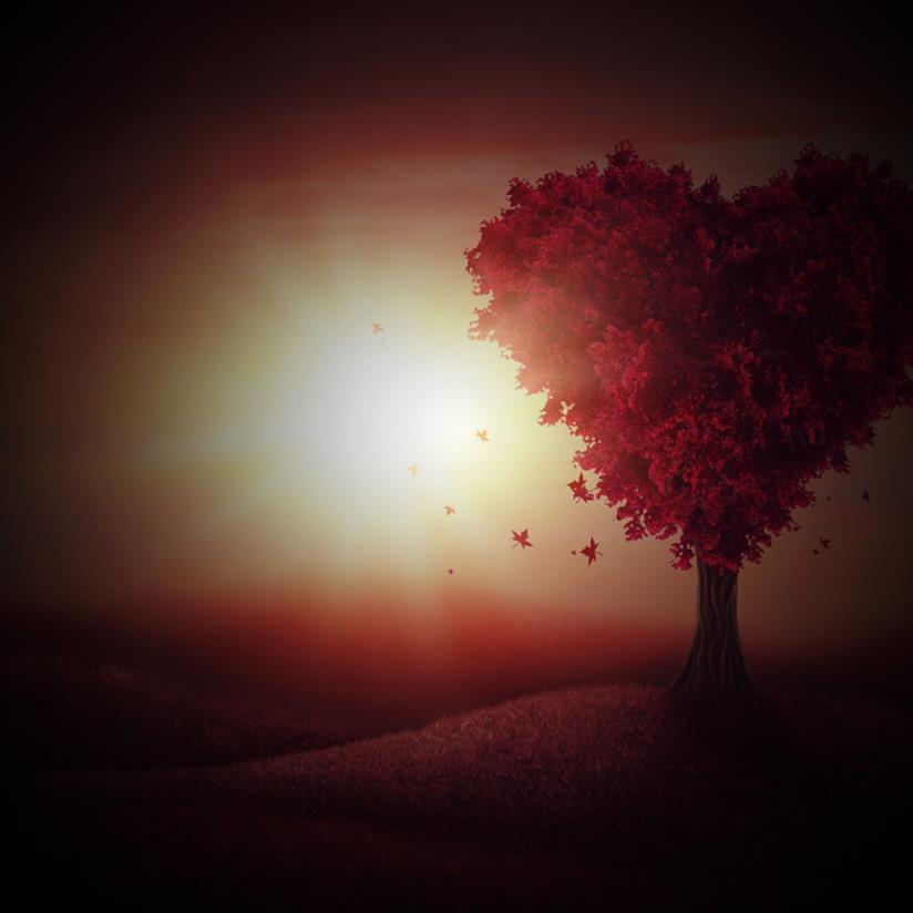 Copertina per San Valentino immagini gratis
