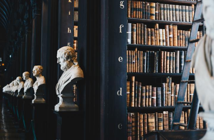Biblioteca con busti di marmo antichi