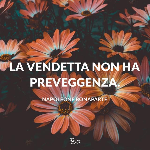 Immagine con citazione napoleone La vendetta non ha preveggenza.