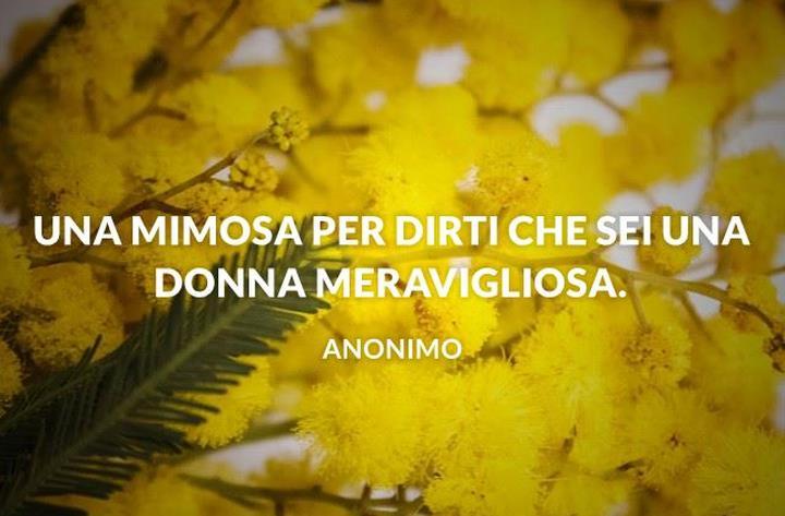 Una mimosa per dirti che sei una donna meravigliosa.