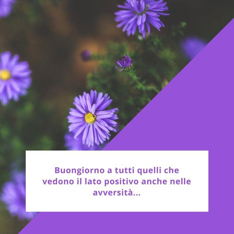 Buongiorno a tutti quelli che vedono il lato positivo anche nelle avversità.