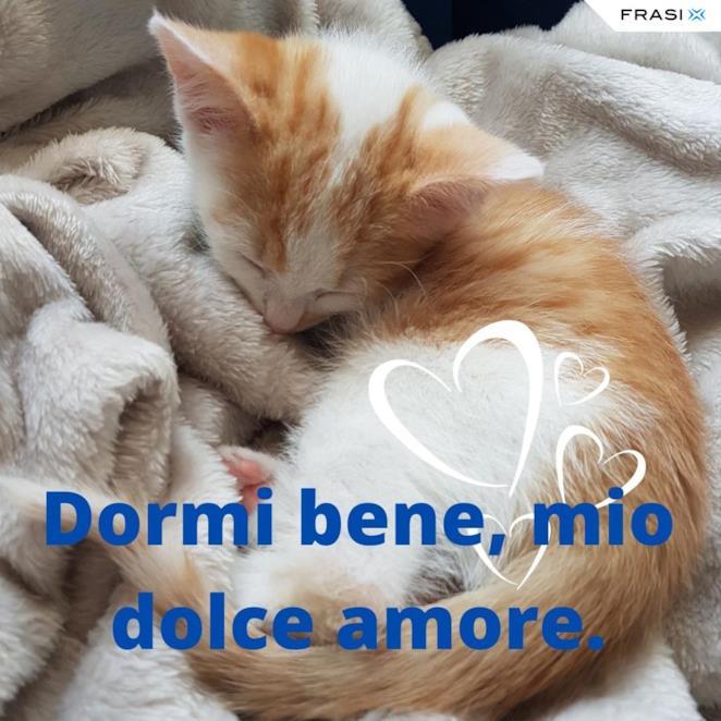 Immagine gattino che dorme con frase Dormi bene, mio dolce amore