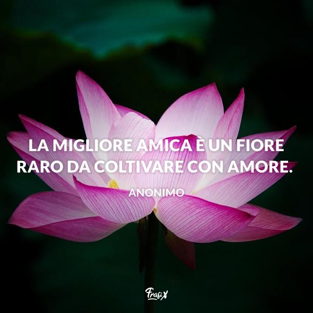 La migliore amica è un fiore raro da coltivare con amore.