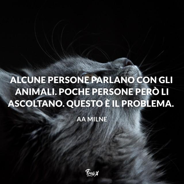 Immagine con citazione Alcune persone parlano con gli animali. Poche persone però li ascoltano. Questo è il problema.