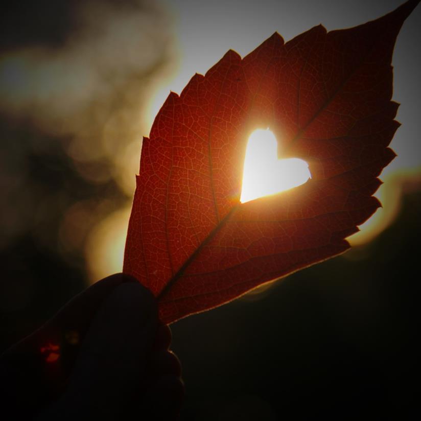 Copertina frasi che colpiscono il cuore