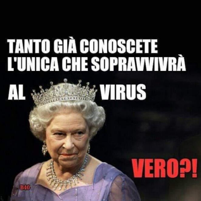 Immagini divertenti quarantena regina elisabetta virus