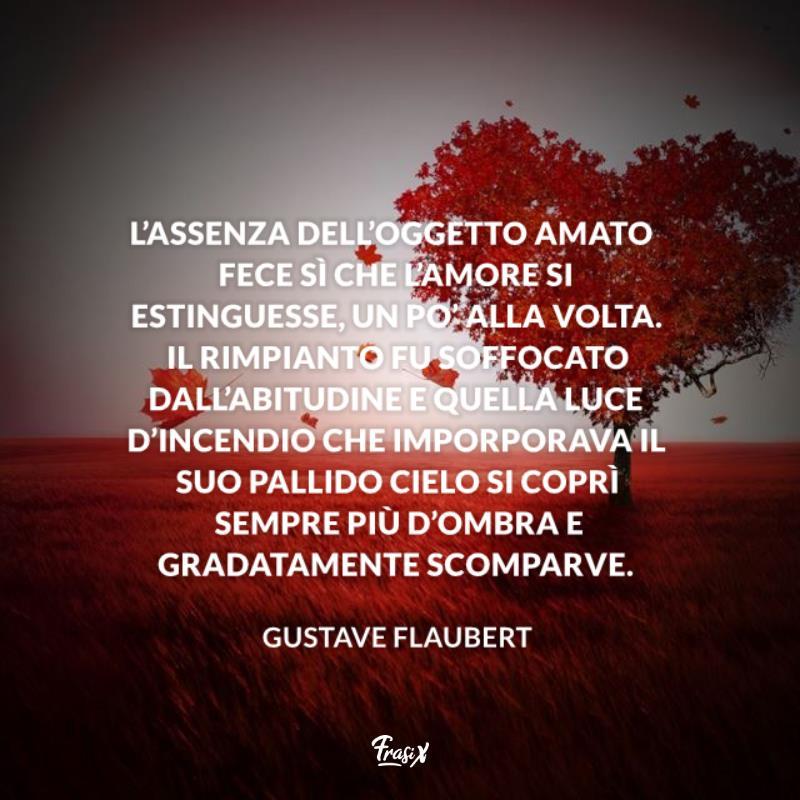 Immagine con citazione Flaubert per frasi sulla distanza belle