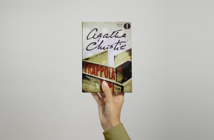 Trappola per Topi: riassunto del libro e personaggi