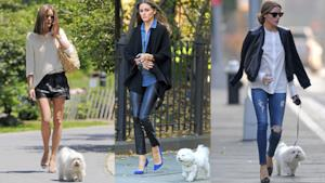 10 outfit per portare fuori il cane con stile come Olivia Palermo