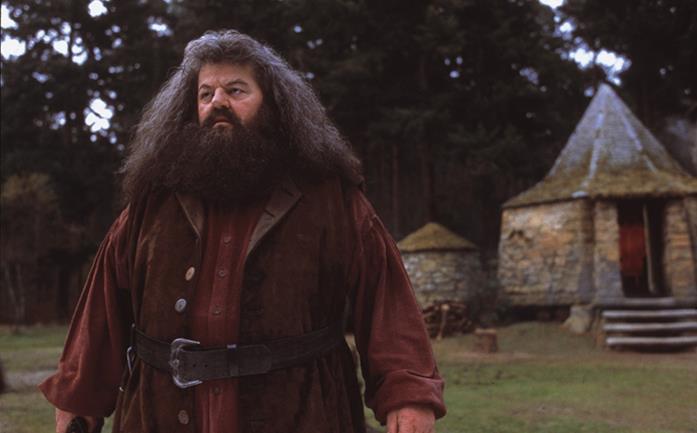 Robbie Coltrane in Harry Potter