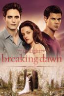 Poster The Twilight Saga: Breaking Dawn - Parte 1