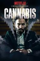Poster Cannabis