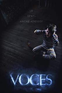 Poster Voces