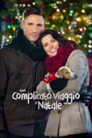 Poster Quel complicato viaggio di Natale