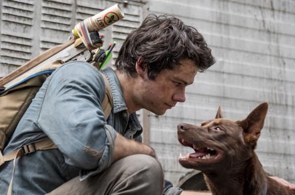 Love and Monsters: come finisce il film con Dylan O'Brien e cosa significa?