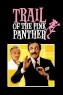 Poster Sulle orme della pantera rosa