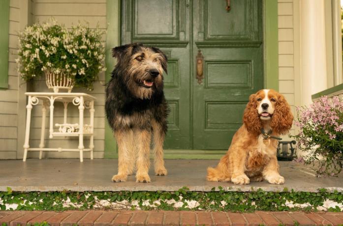 Lilly e il Vagabondo sul portico
