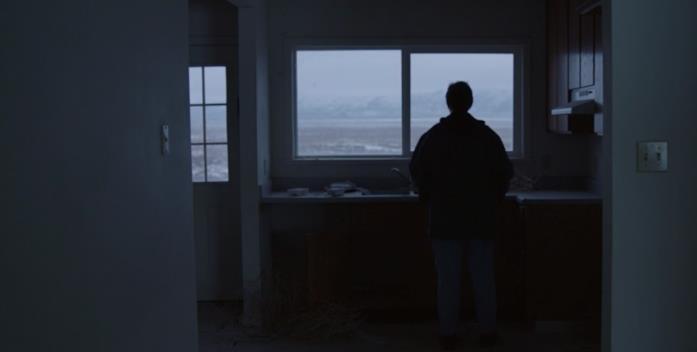 Fern guarda fuori dalla finestra