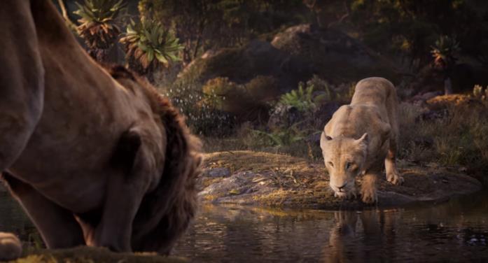 Simba e Nala in una scena de Il Re Leone