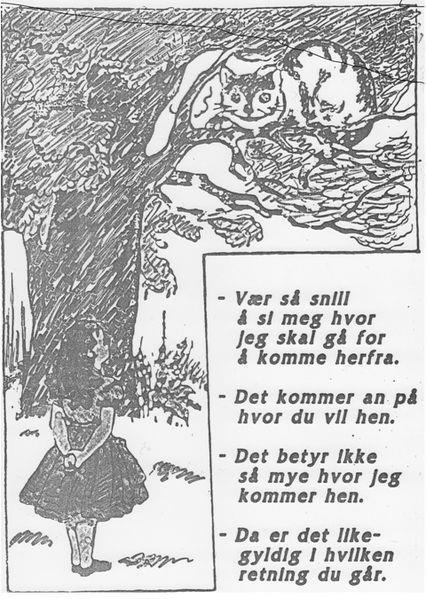 Immagine dal libro