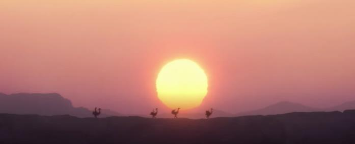 Il tramonto sul deserto
