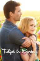 Poster I tulipani dell'amore