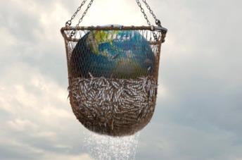 Seaspiracy: l'impatto negativo della pesca sull'ambiente nel docufilm del creatore di Cowspiracy