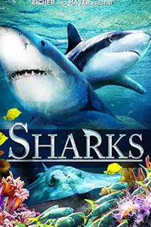 Poster Sharks (in 3D)