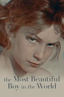 Poster Il ragazzo più bello del mondo