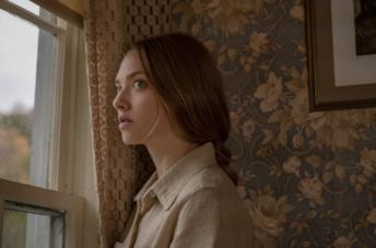 Amanda Seyfried in L'apparenza delle cose