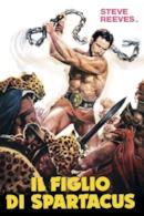 Poster Il figlio di Spartacus