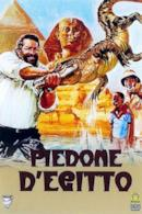 Poster Piedone d'Egitto