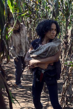 Una scena da The Walking Dead episodio 9x11
