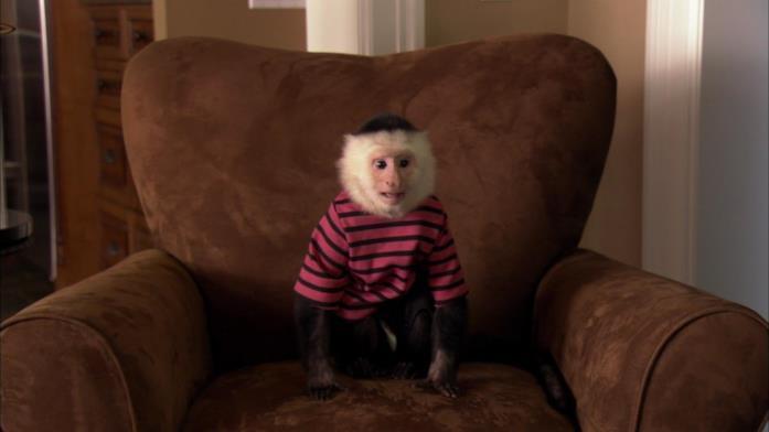 La scimmia di Dottor Dolittle 5