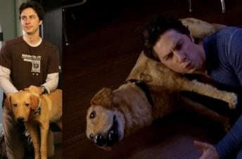 Scrubs: la storia di Rowdy, il labrador impagliato, protetto da Disney