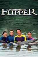 Poster Le nuove avventure di Flipper