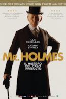 Poster Mr. Holmes - Il mistero del caso irrisolto