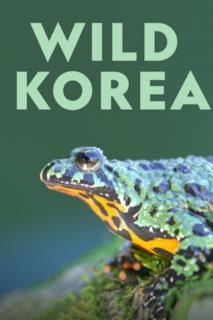 Poster Wild Korea