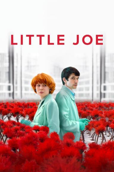 Poster Little Joe