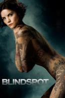 Poster Blindspot