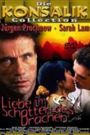 Poster Liebe im Schatten des Drachen
