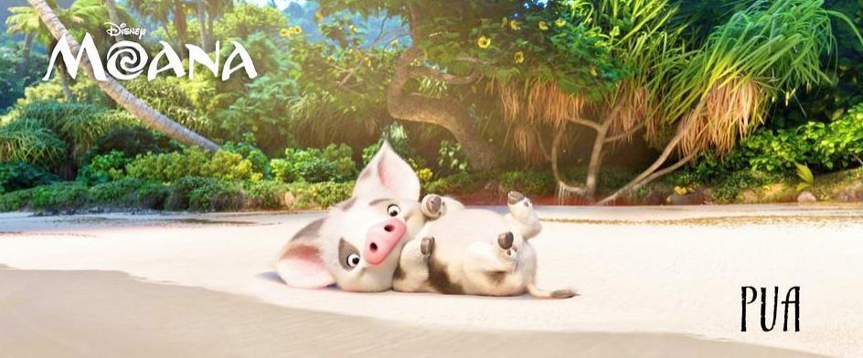 Il maialino Pua, fedele amico della protagonista