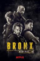 Poster Bronx