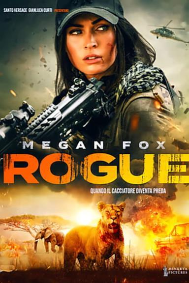 Poster Rogue