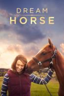 Poster Dream Horse