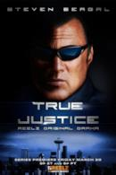 Poster True Justice