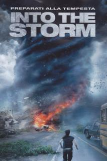 Poster Into the Storm