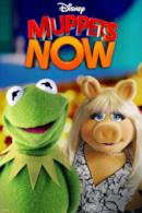 Poster Muppets Now